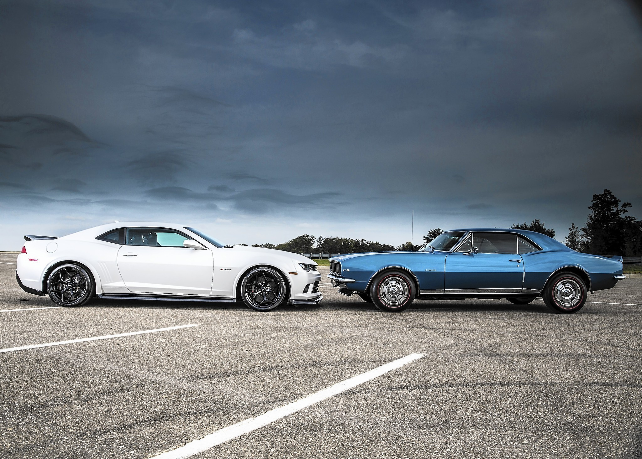 Modern Muscle Cars Gallery