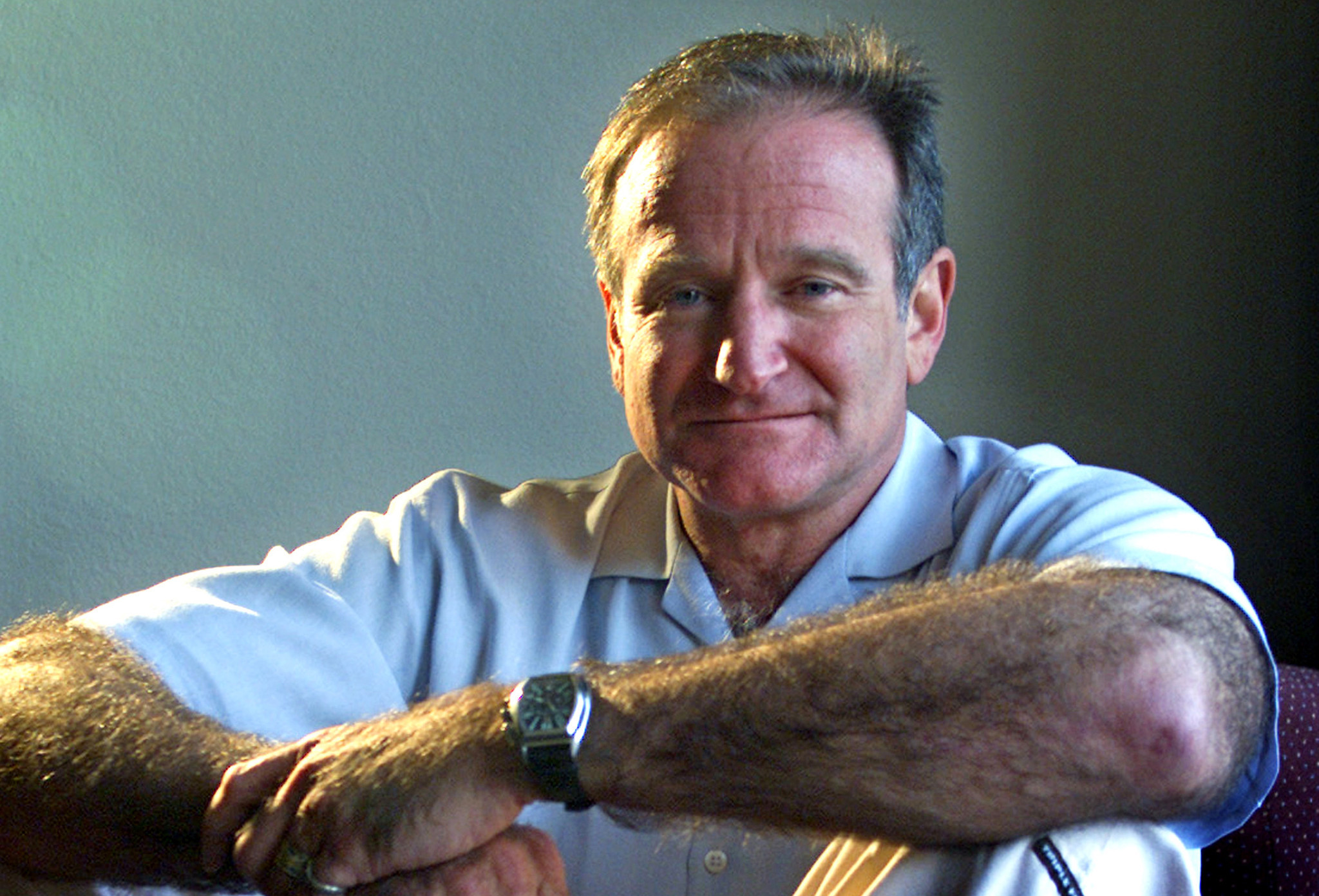 Robin Williams' rise no surprise to a writer dazzled by ...