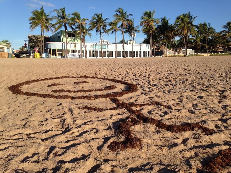 Shephard S Beach Resort Clearwater Florida The Best Beaches In