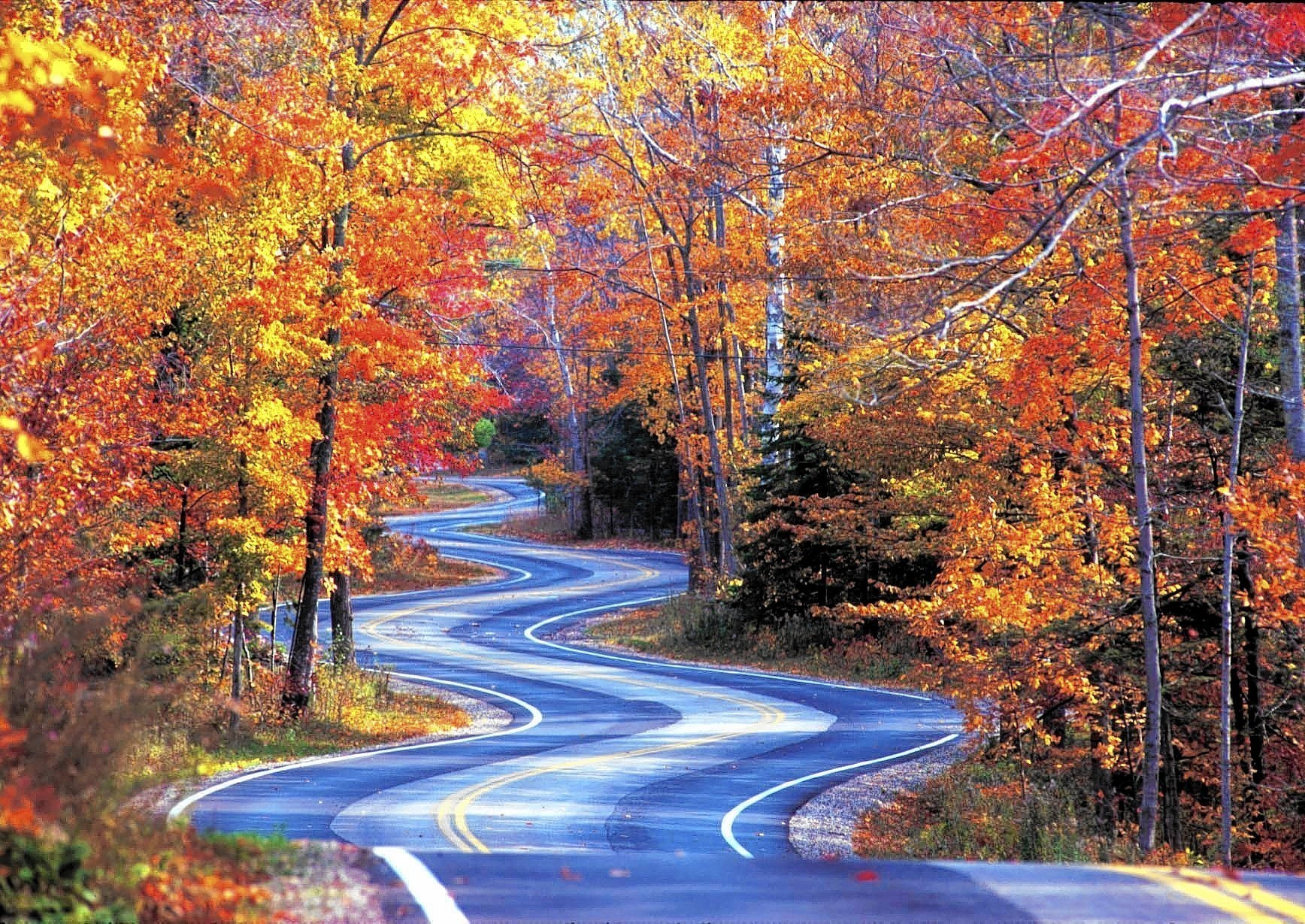 Great Wisconsin drives for fall leaves - Chicago Tribune
