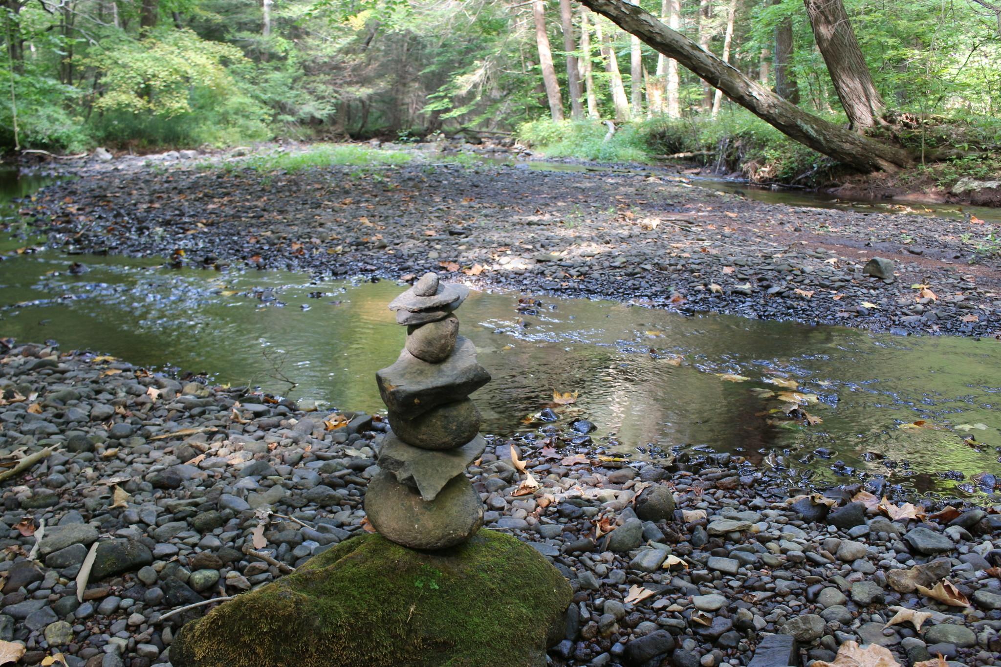 Nature S Way Wallingford Ct