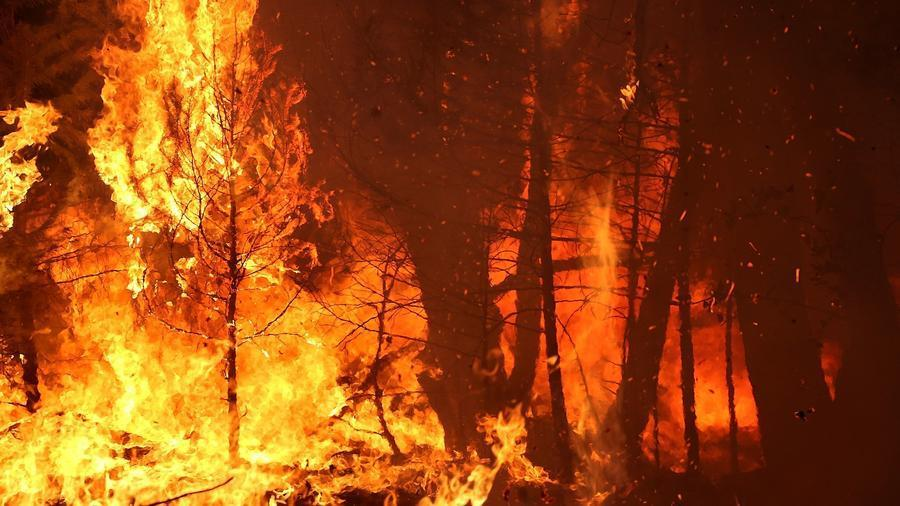 Man accused of starting King fire allegedly broke into ...