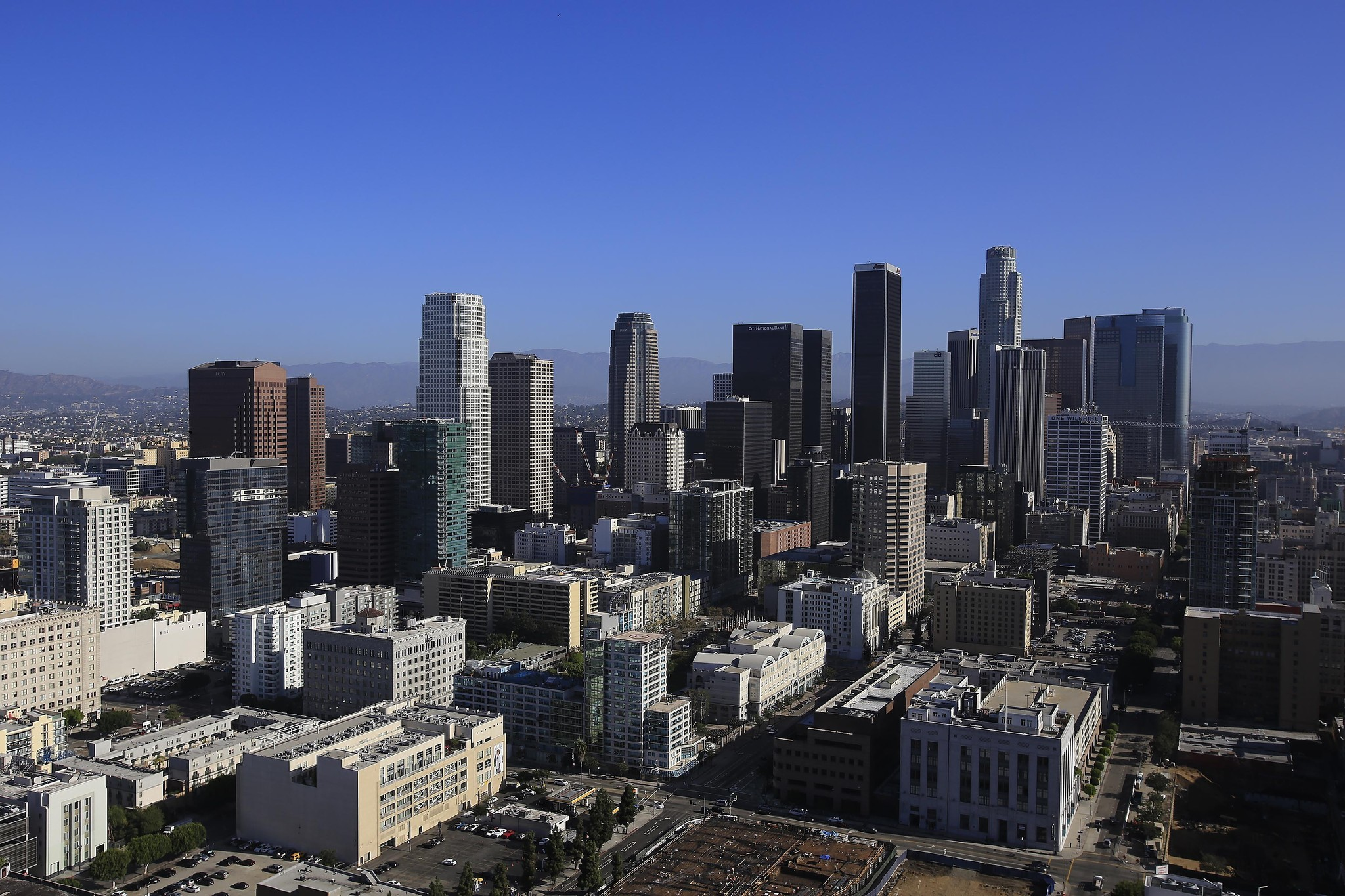Los Angeles Leaves The Flat Roof Society La Times