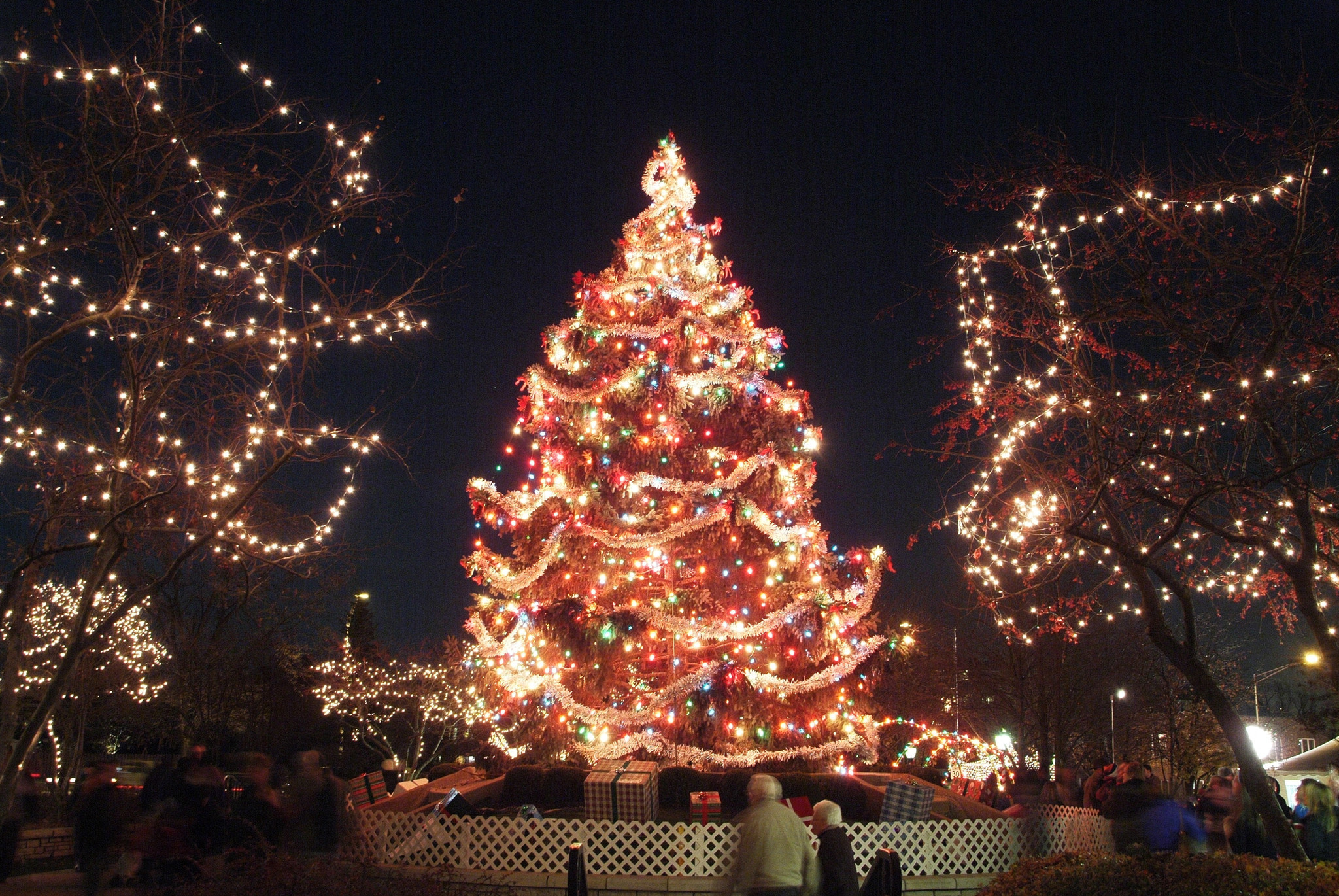 arlington heights tree lighting ceremony november 28 chicago tribune