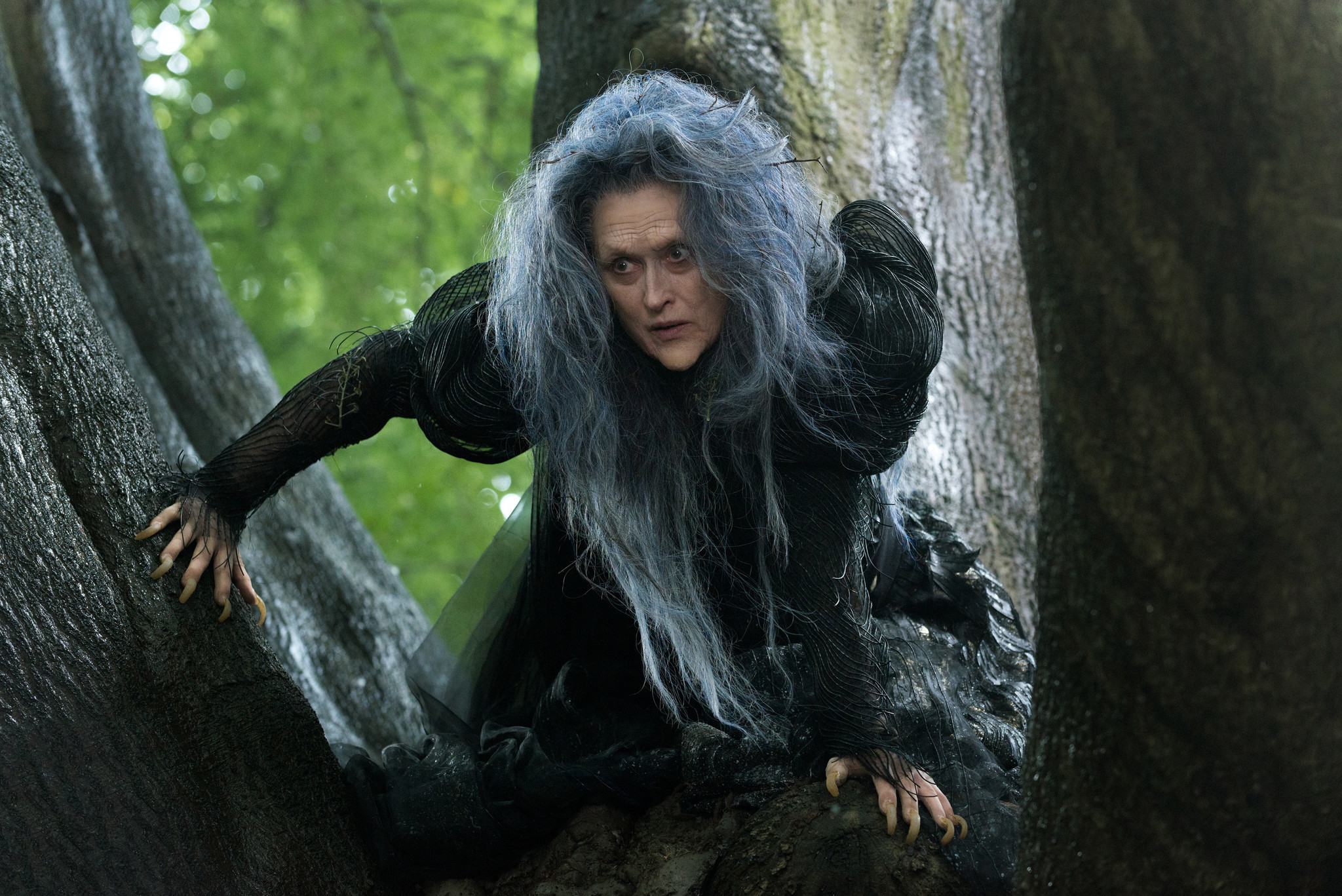 Scene from 'Into the Woods.'