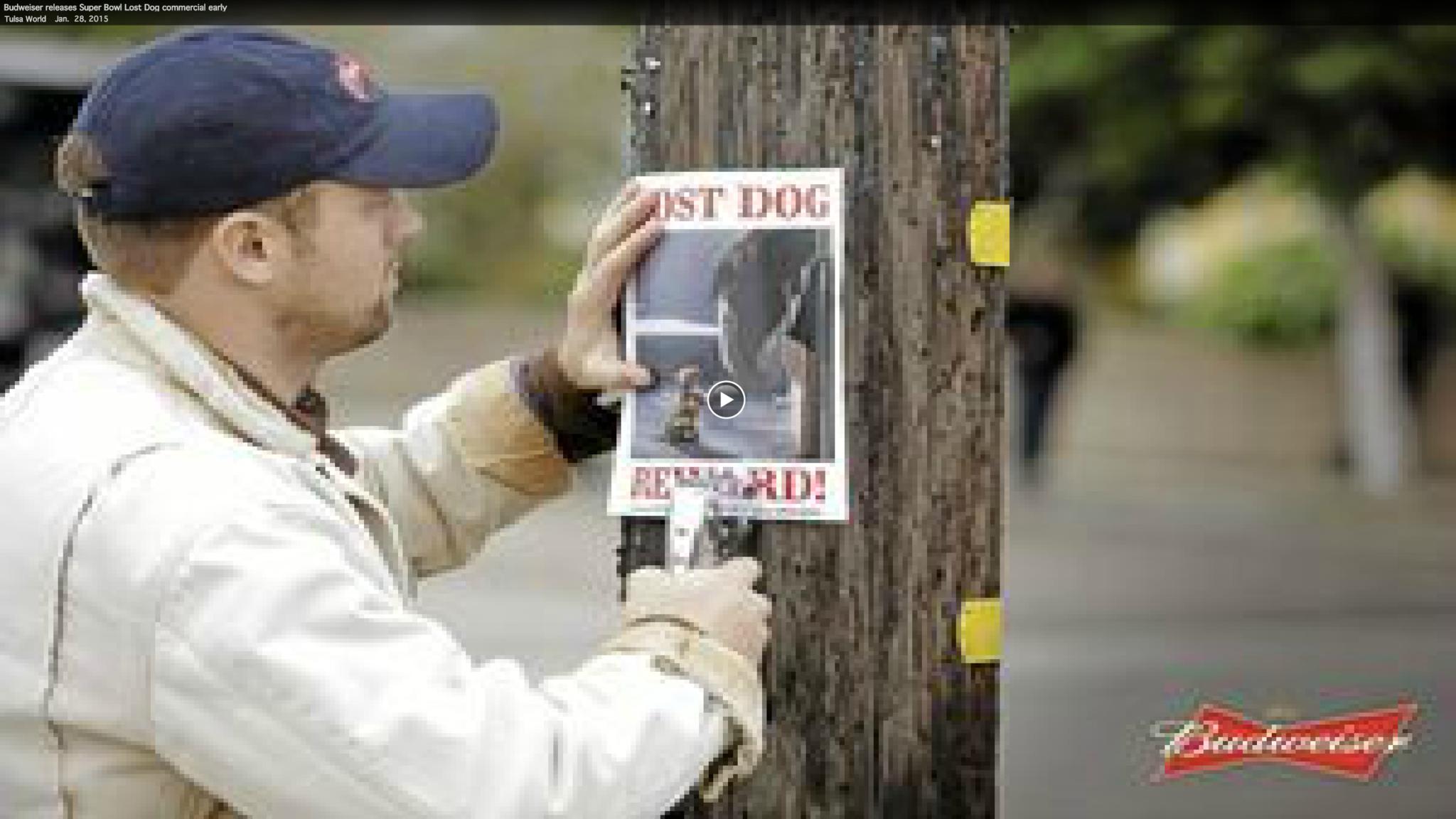 Budweiser's 'Lost Dog' Super Bowl ad - Baltimore Sun