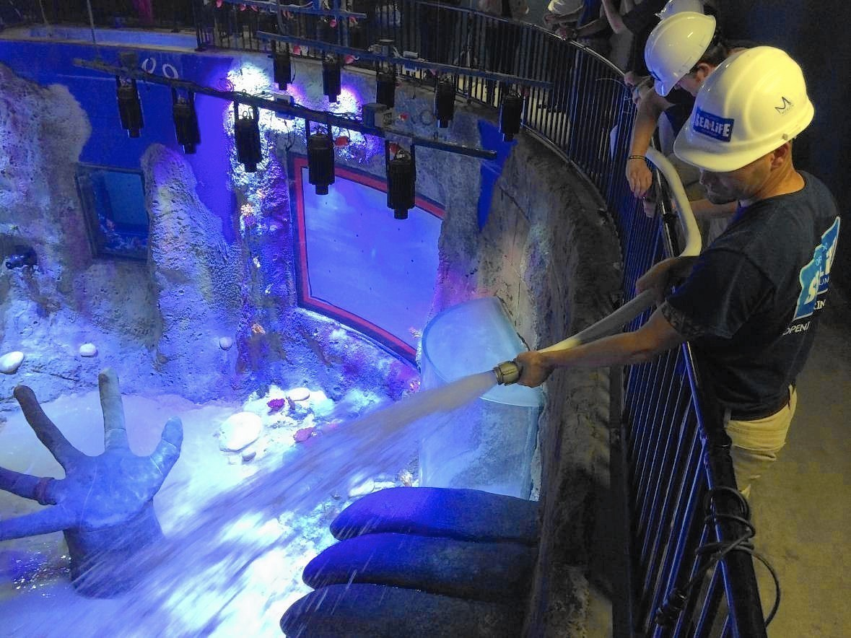 Sea Life Aquarium starts two-day fill process - Orlando ...