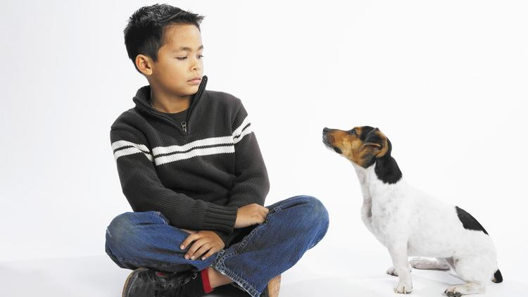 Ask your guests beforehand if they have allergies with some pets so you can arrange everything before they arrive.