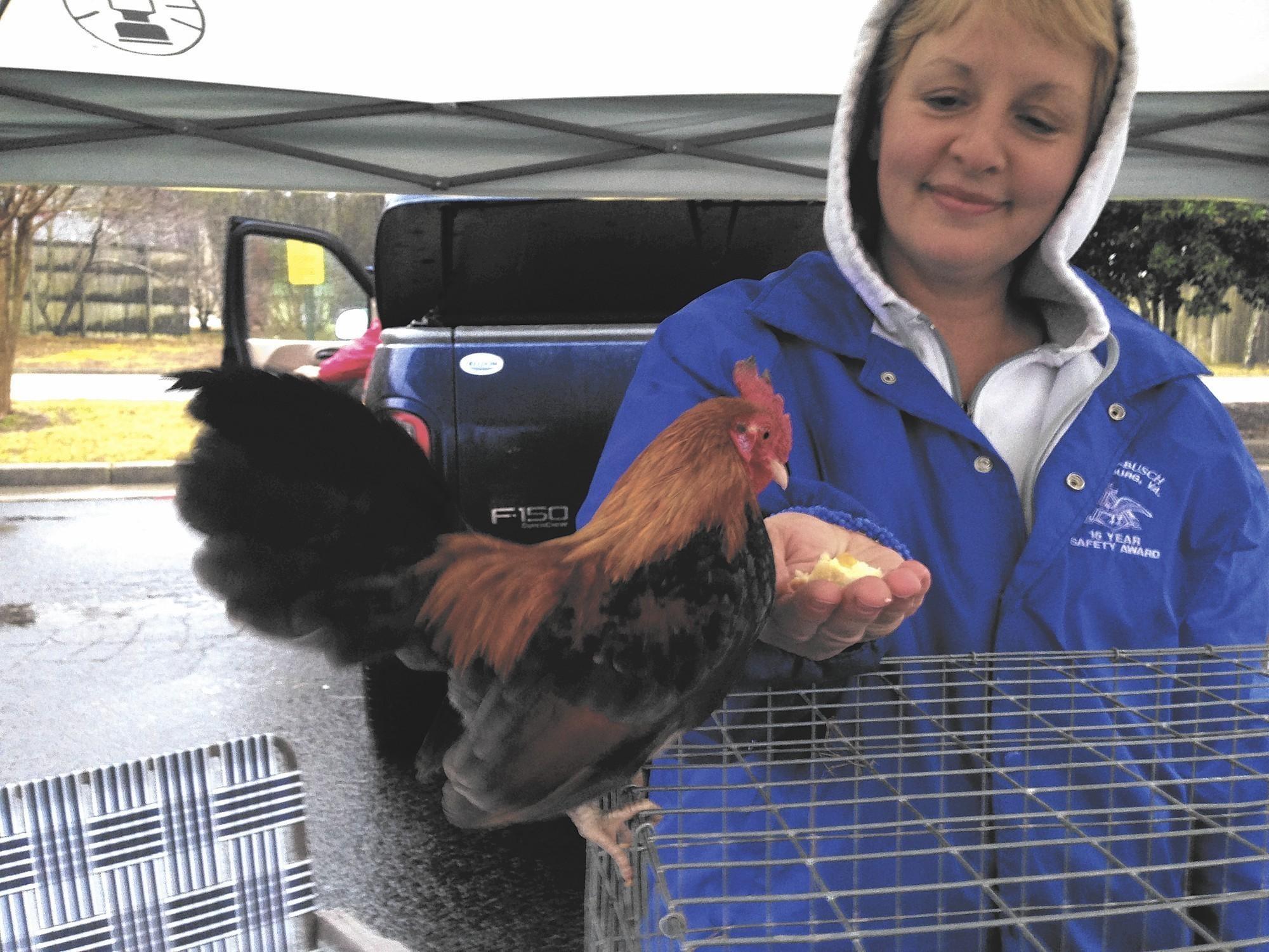 Poultry Swap Meet