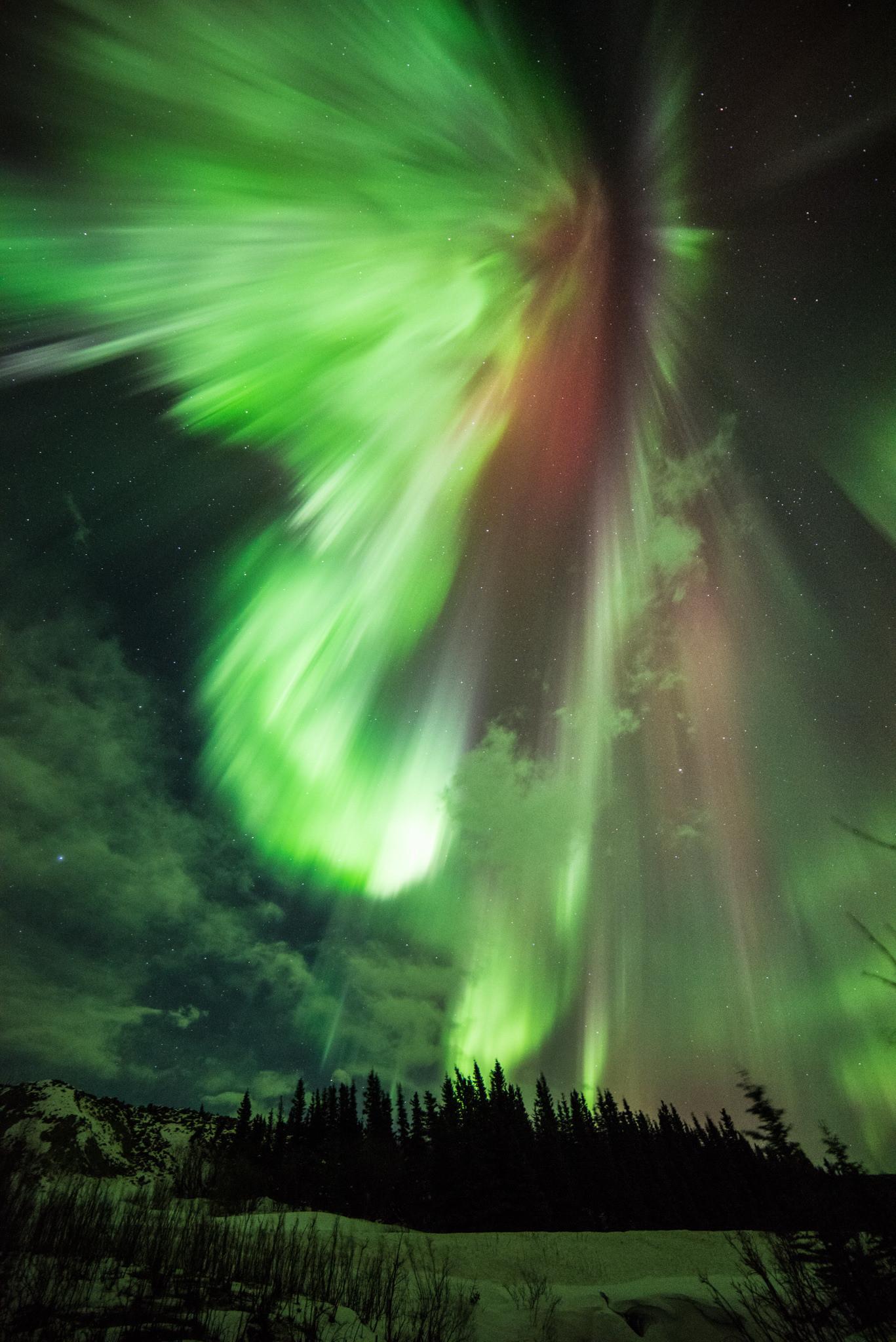Severe Solar Storm Surprises Scientists  Wows Skywatchers