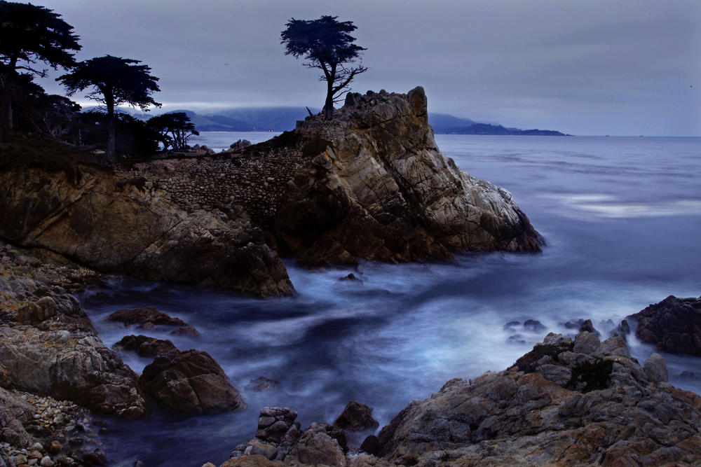 The Lone Cypress In Pebble Beach Is Perhaps Most Photographed Tree North America Mark Boster Los Angeles Times More Photos
