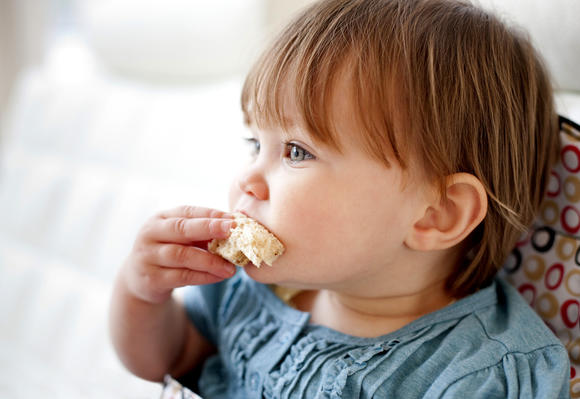 Beechnut Baby Food Recall