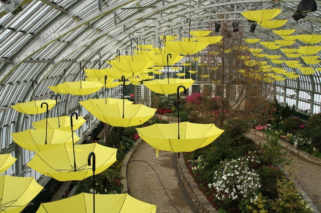Garfield Park Conservatory To Reopen In Full On Earth Day