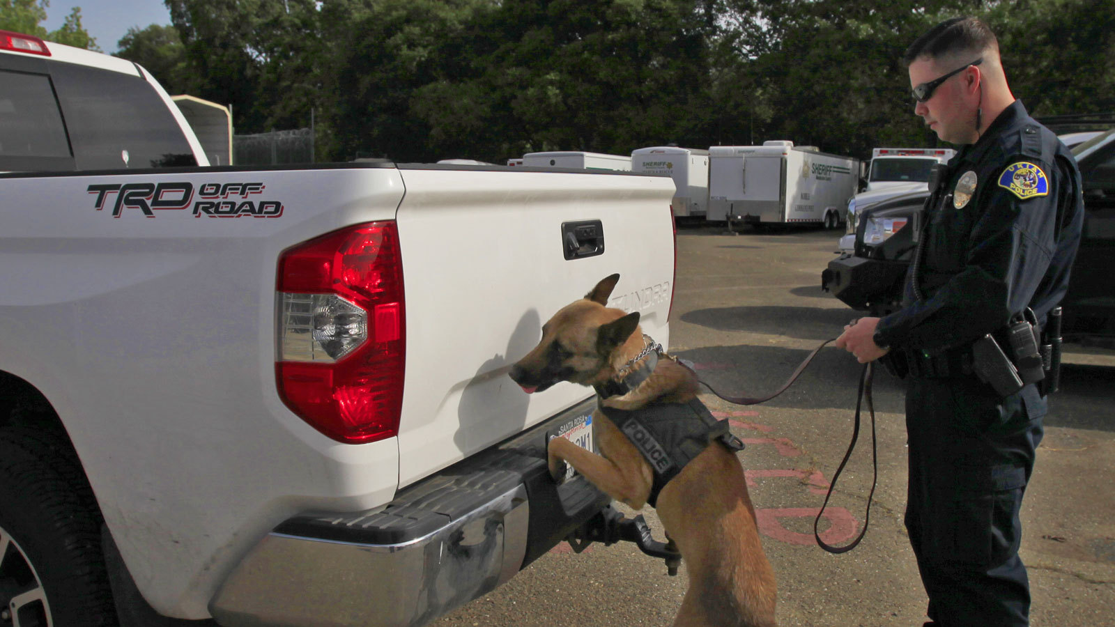 High Court Limits Drug-sniffing Dog Searches During
