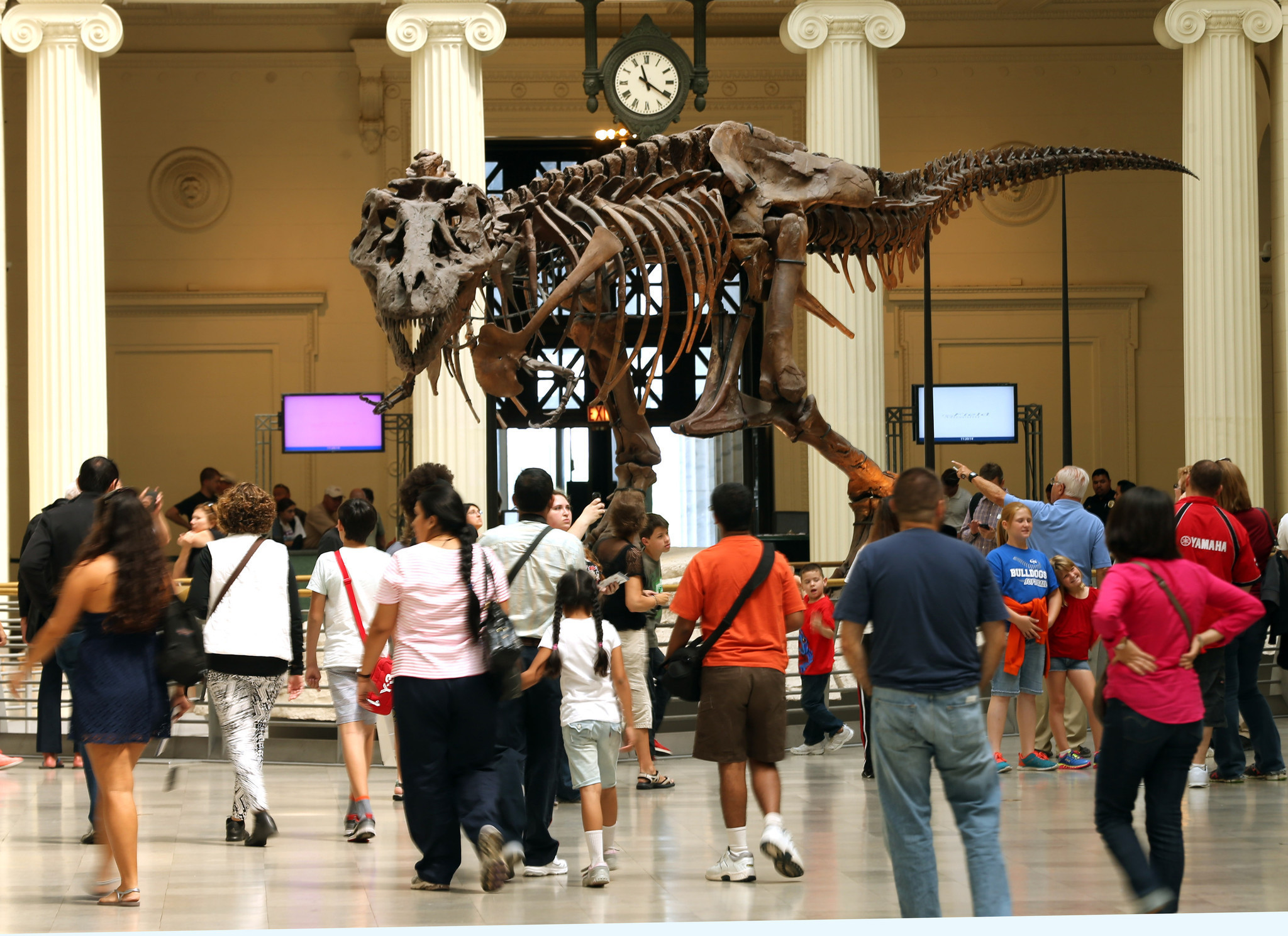 documentary on trex sue leads to pardon push for