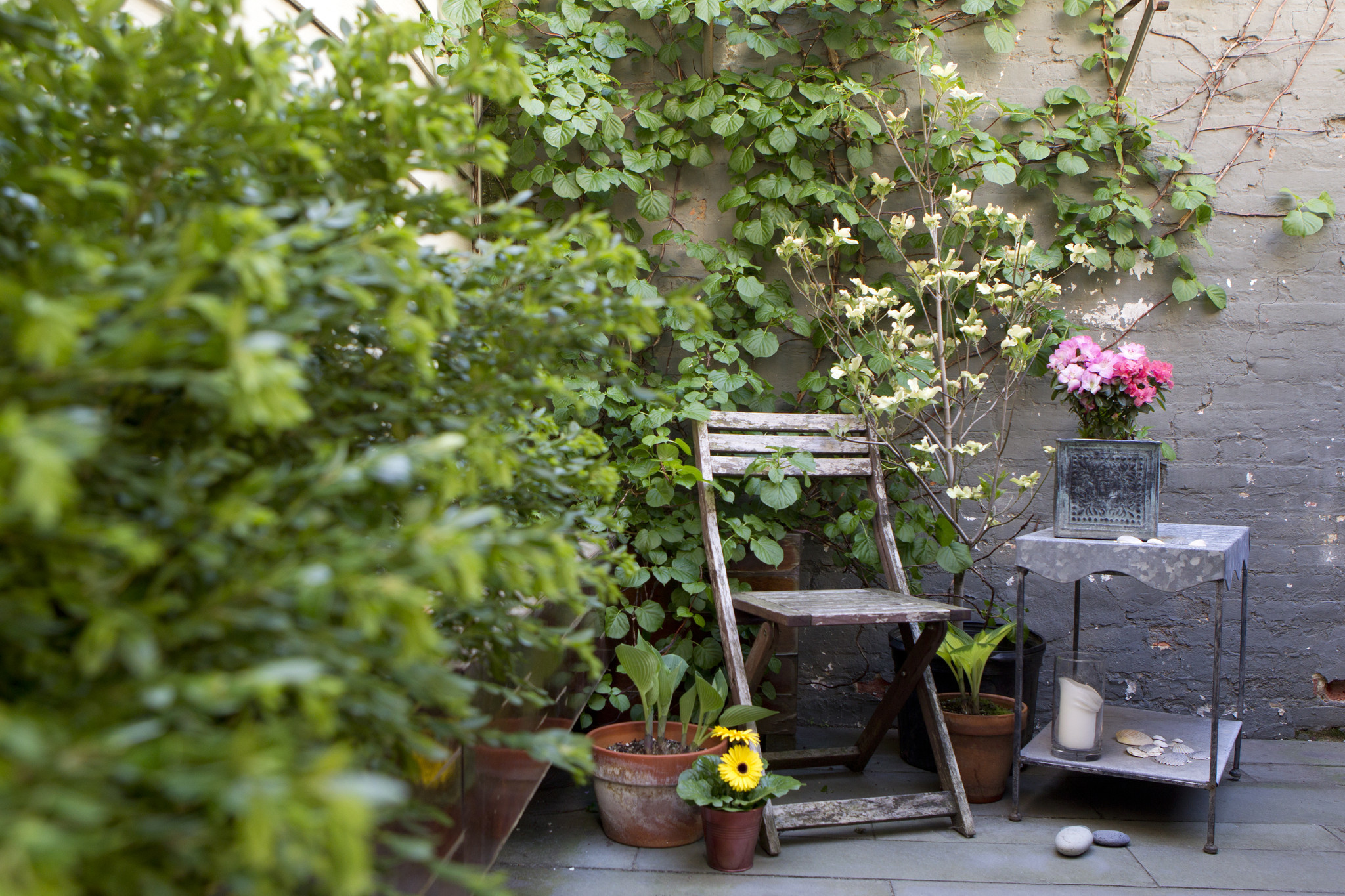 Vertical gardening tips: Add beauty and function to a small yardVertical gardening tips: Add beauty and function to a small yard - Baltimore Sun - 웹