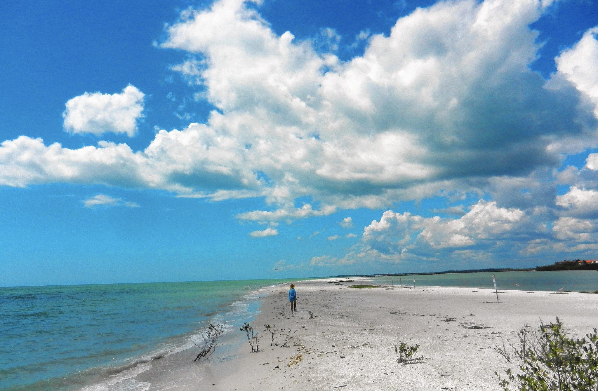 Southwest Florida's Hidden Beaches