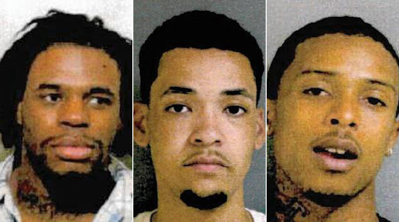 Cops Gang Members Involved In Lincolnwood Mall Brawl Lincolnwood