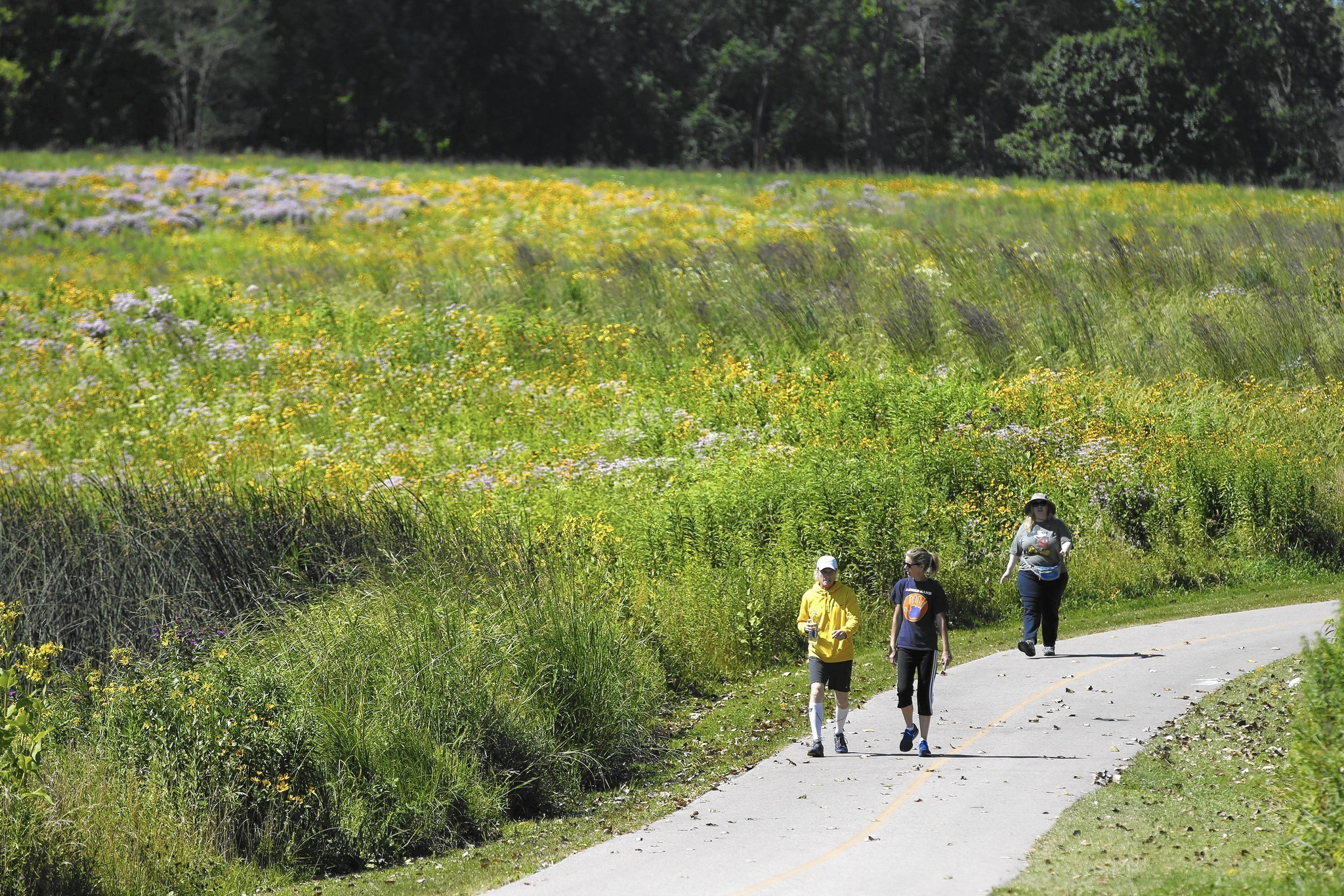 Cook County Forest Preserve District Has Room To Improve