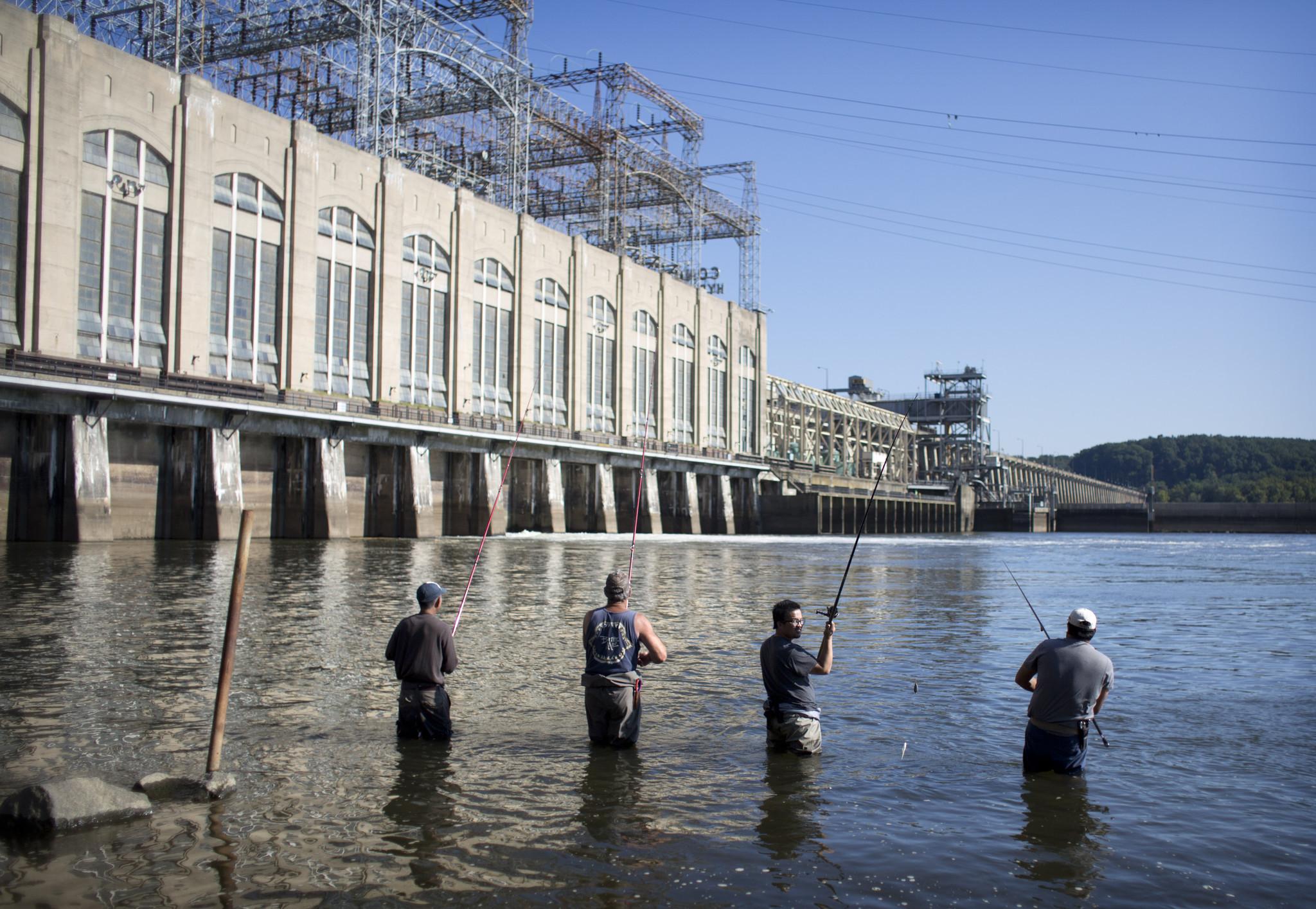 Conowingo Dam Fish Lift Overhaul Urged To Restore