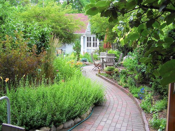 Stepping Into The Pleasures Of A Well Designed Garden Path