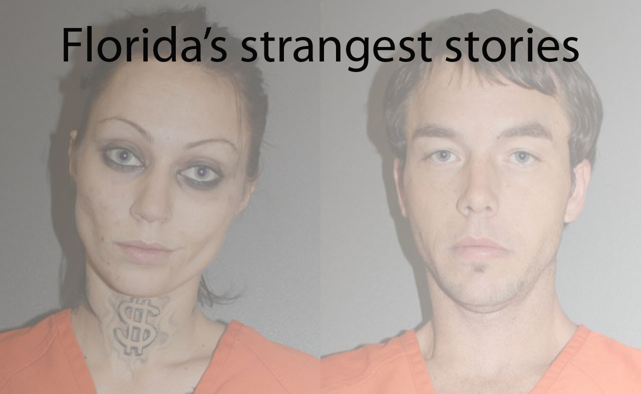 Pictures: 'Florida man' and other weird crime stories ...