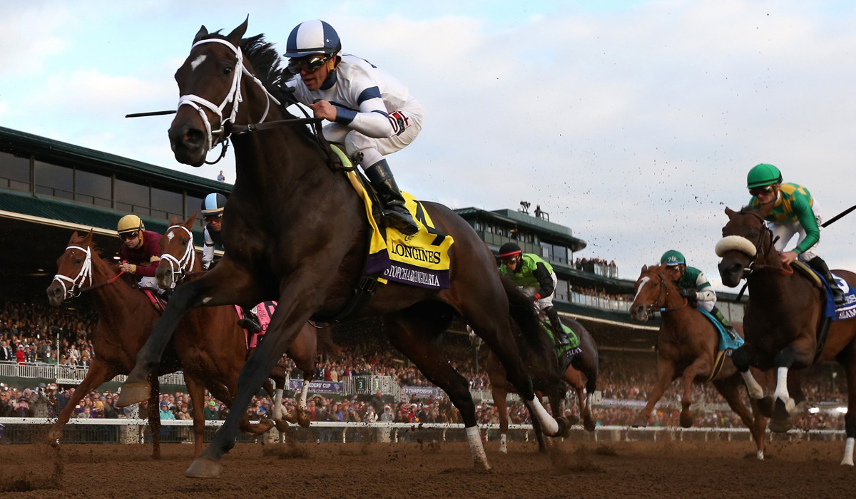 Breeders Cup A Bang Up Distaff Win For Stopchargingmaria