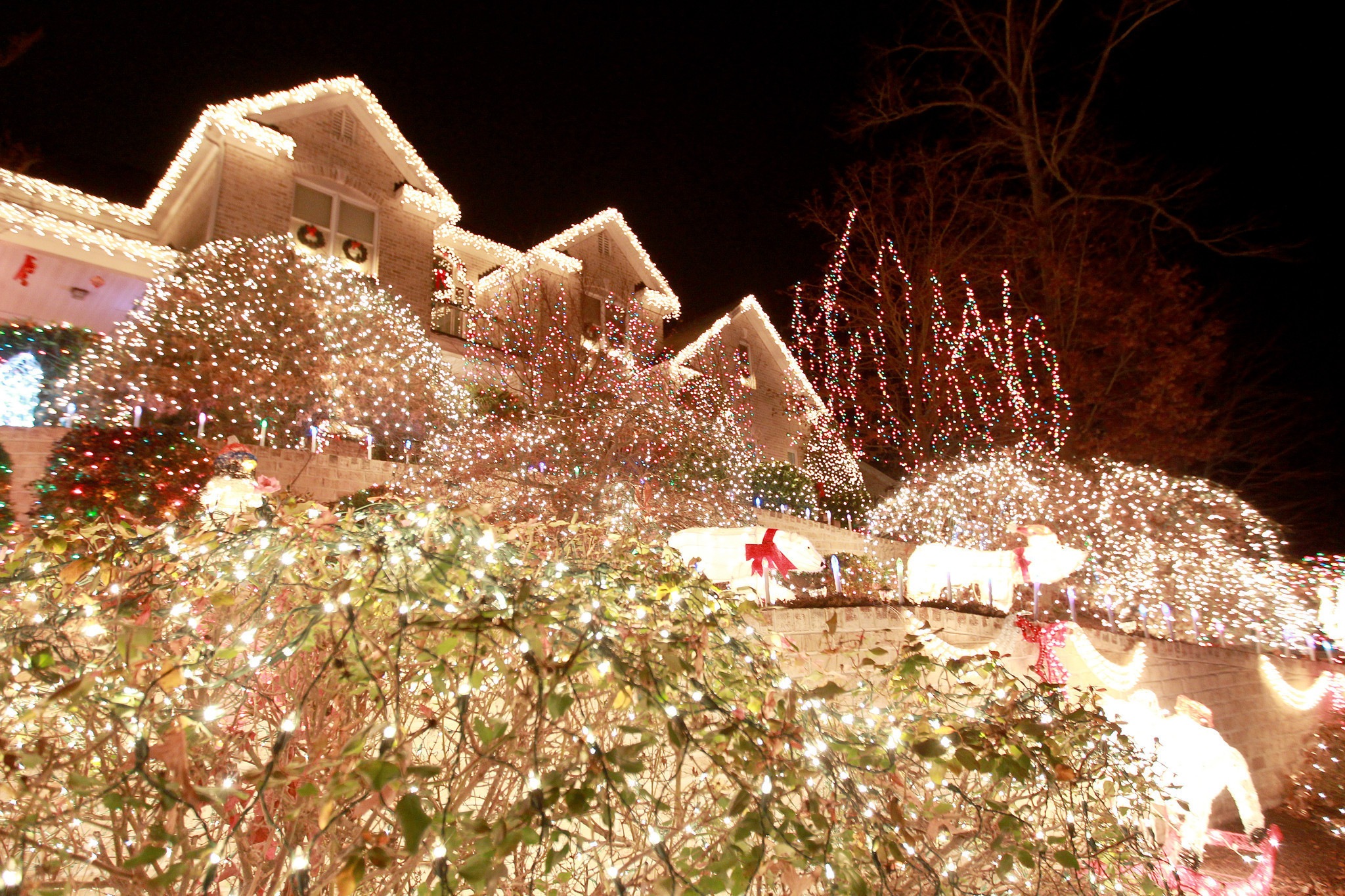 Holiday light shows galore in Hampton Roads and Richmond | DP List ...