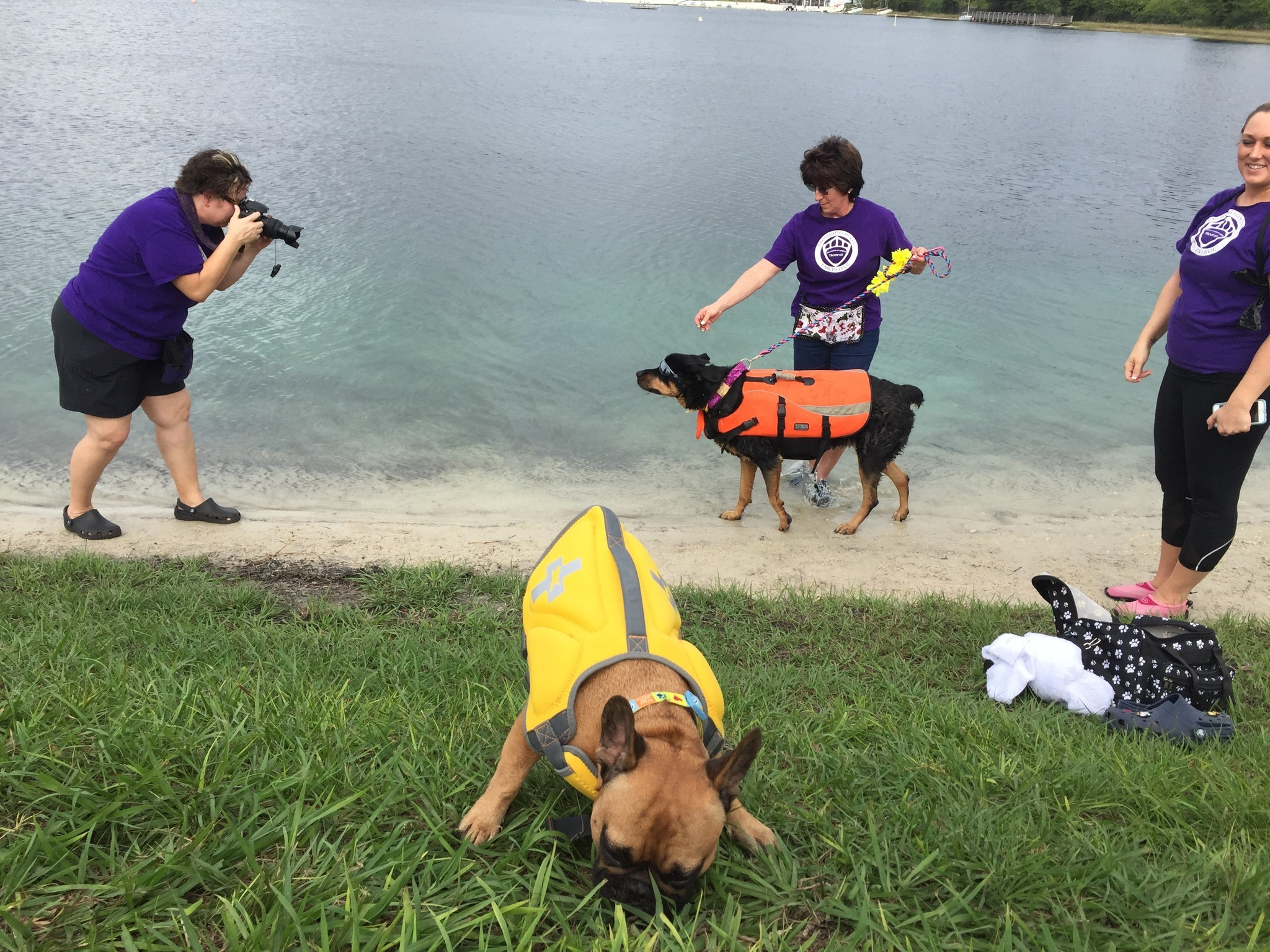 scout dog sex and the city in Florida