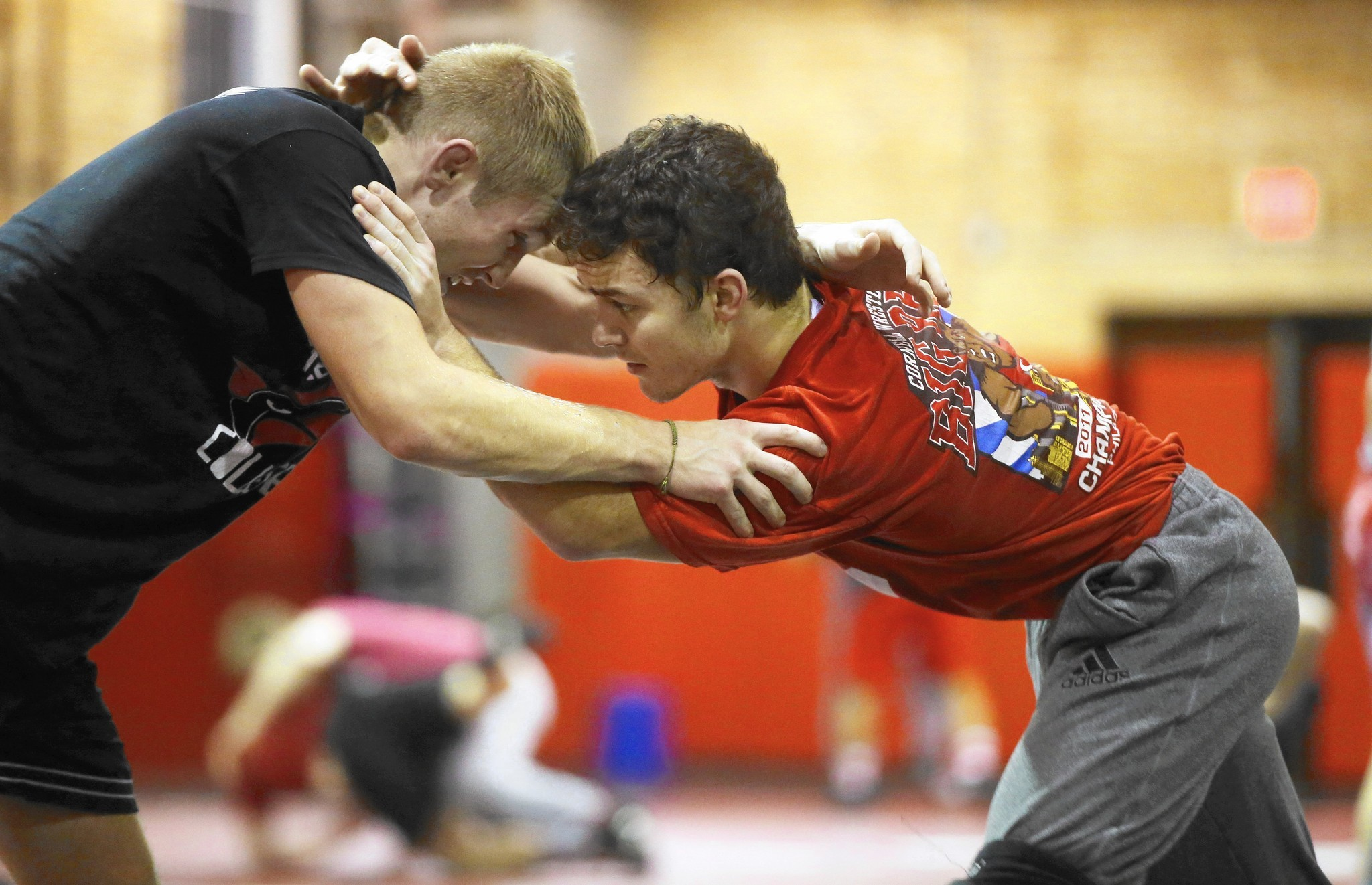 Studies shine harsh light on wrestling's concussion rate