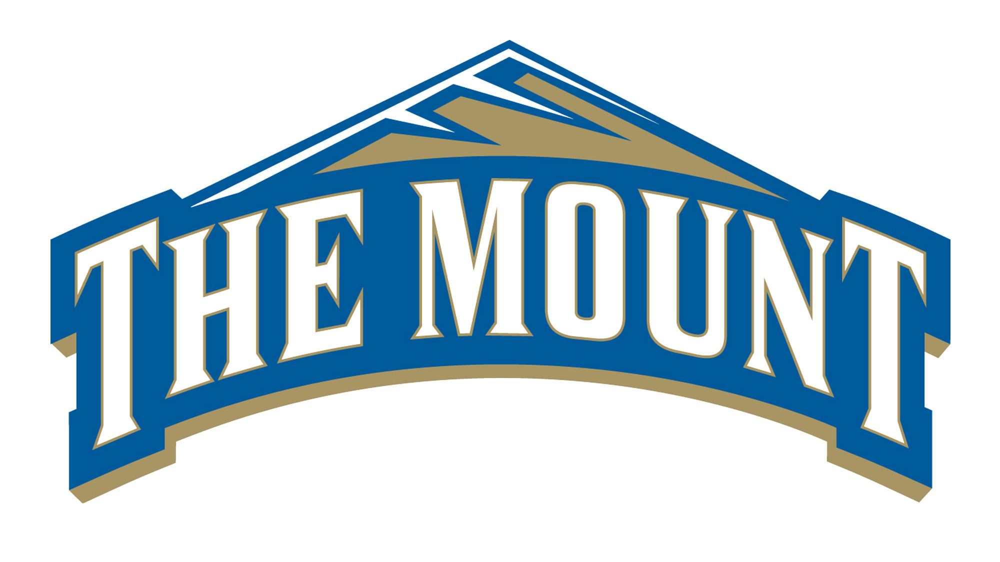 Division I men's lacrosse preview for Mount St. Mary's ...