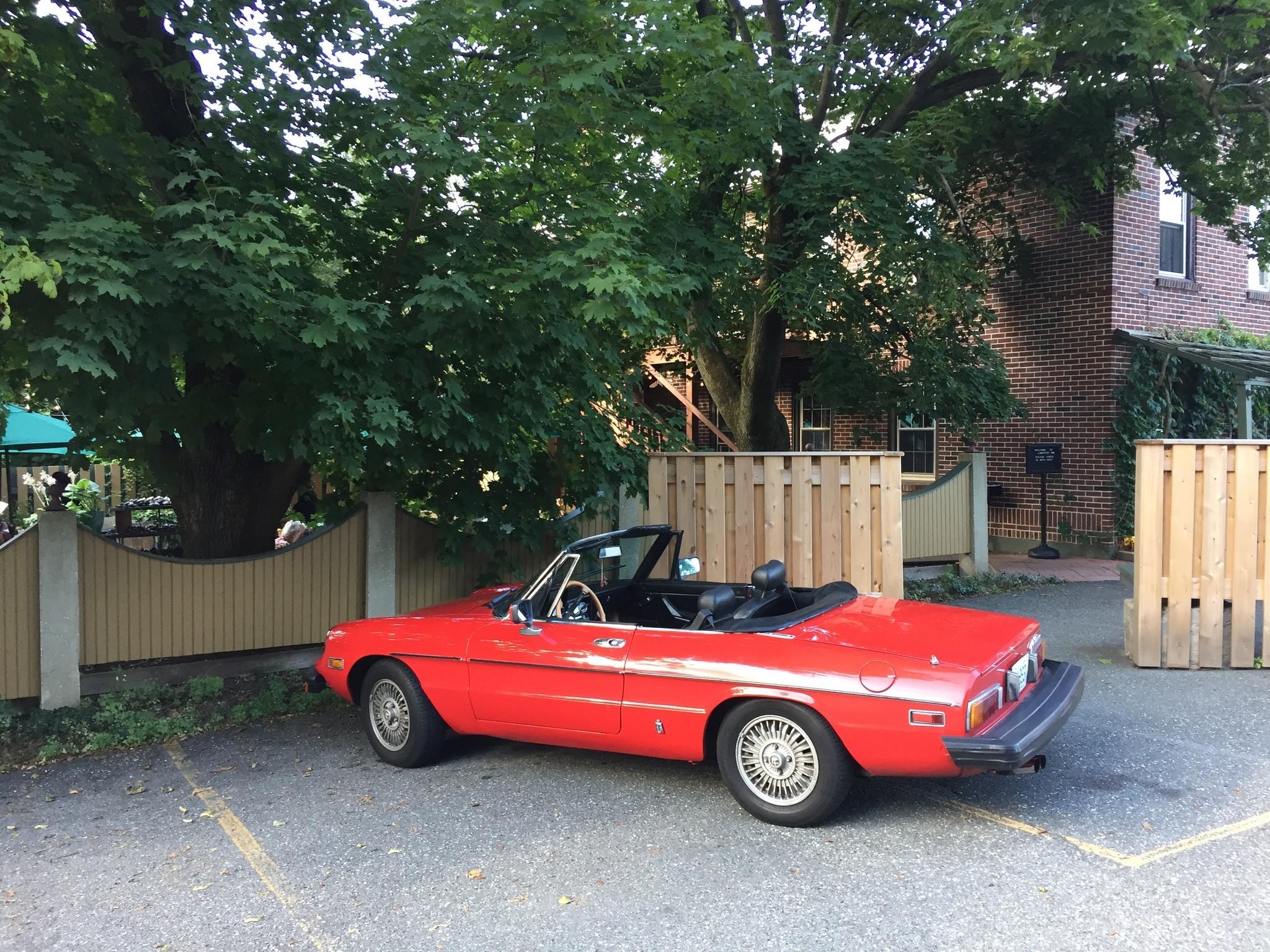 1981 Alfa Romeo Spider Veloce The Morning Call