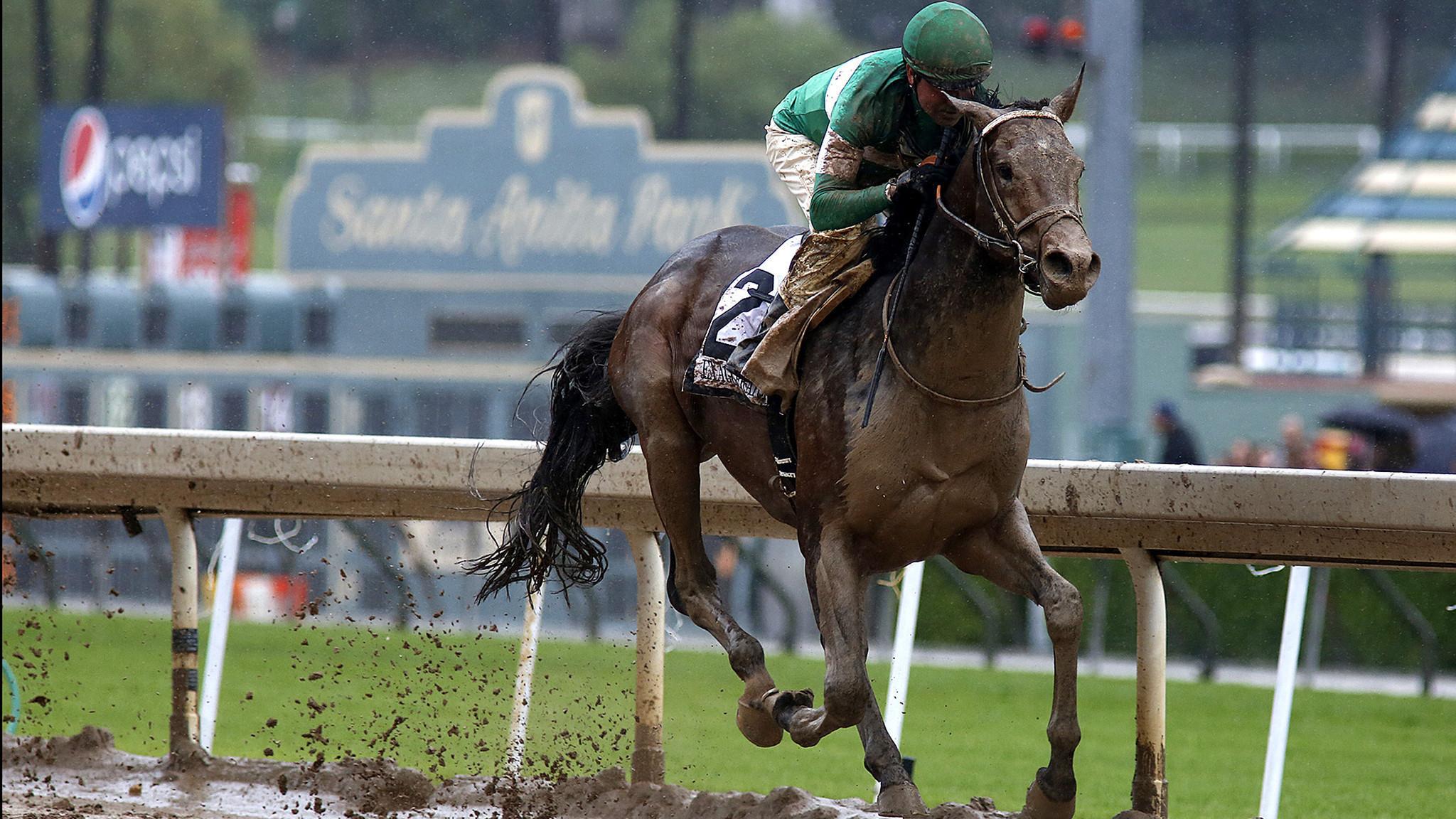 Exaggerator Wins Santa Anita Derby Impressively For The