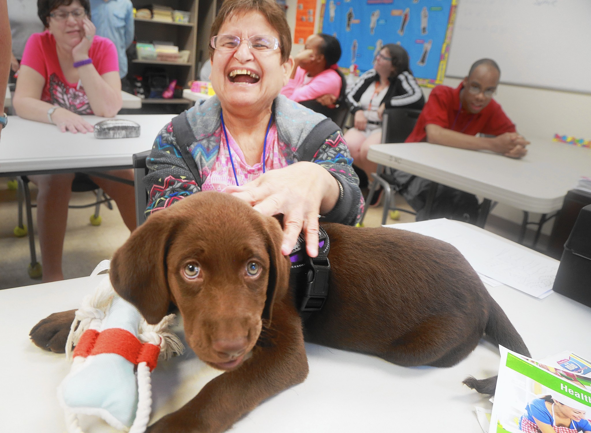 Puppy Begins Work In West Boca As Therapy Dog For Disabled