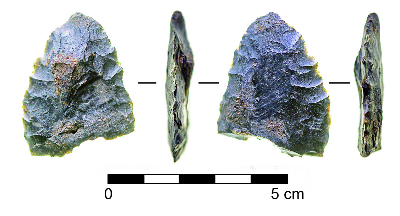 The discovery of this biface stone tool and other stone artifacts in 14,500-year-old sediments in the Aucilla river suggests humans were living in the southeastern United States 1,500 years earlier than previously thought.