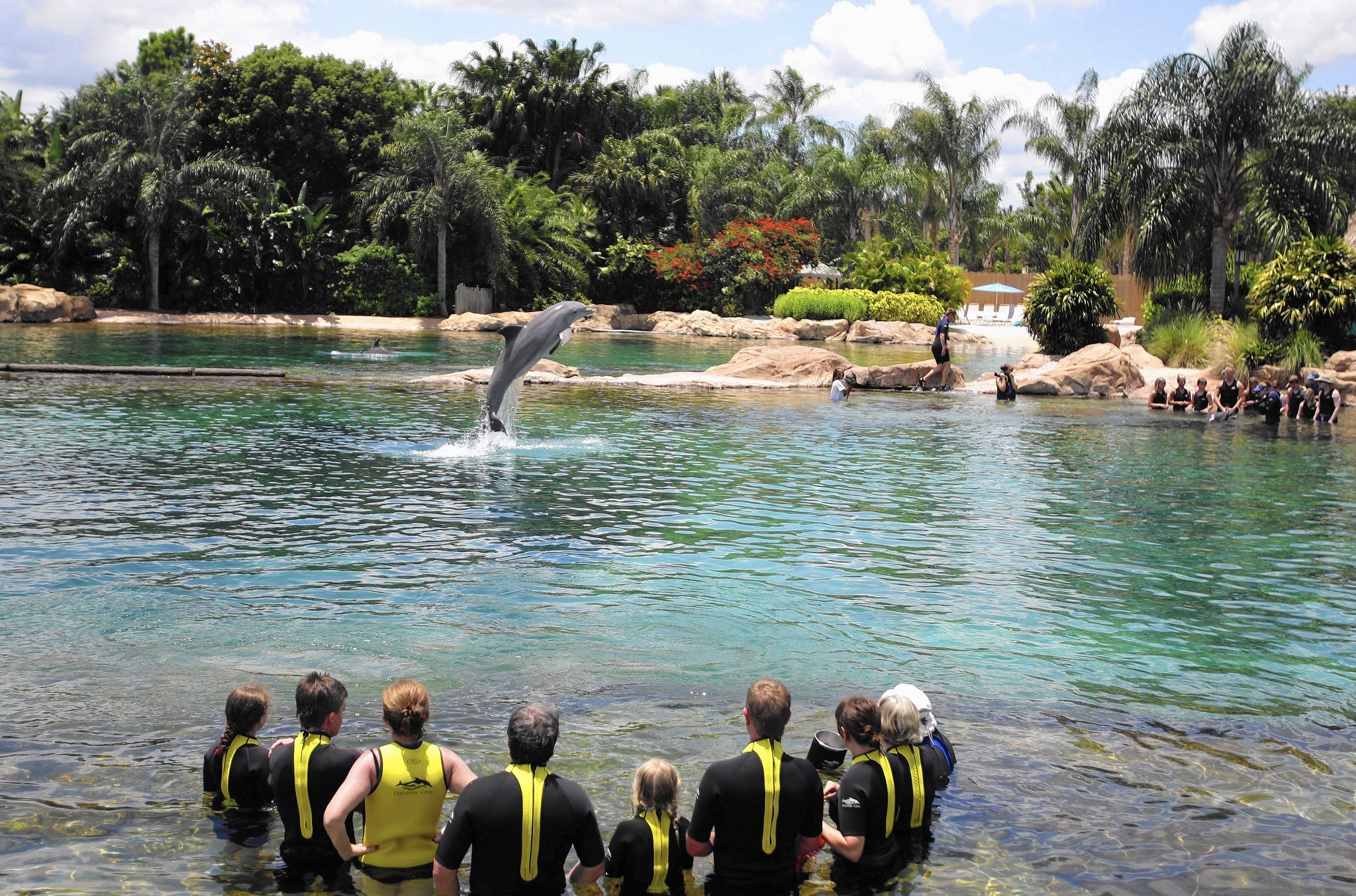 Discovery Cove Brings Different Feel Than Theme Park