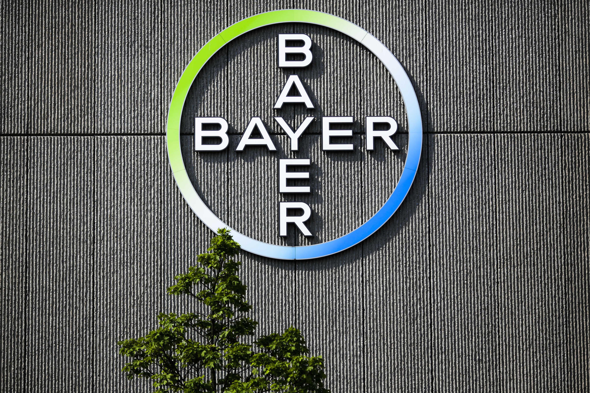 Image result for The Other Monsanto Chemical That Bayer Investors Should Watch