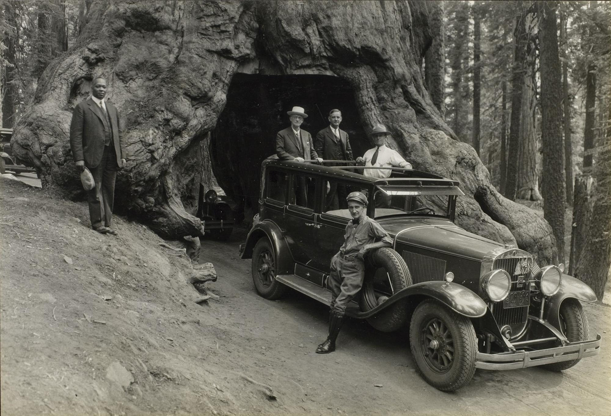 Audley D. Stewart, George Eastman and companions ridiing through the Wawona Tree in Yosemite National Park, Pacific coast trip, 1930