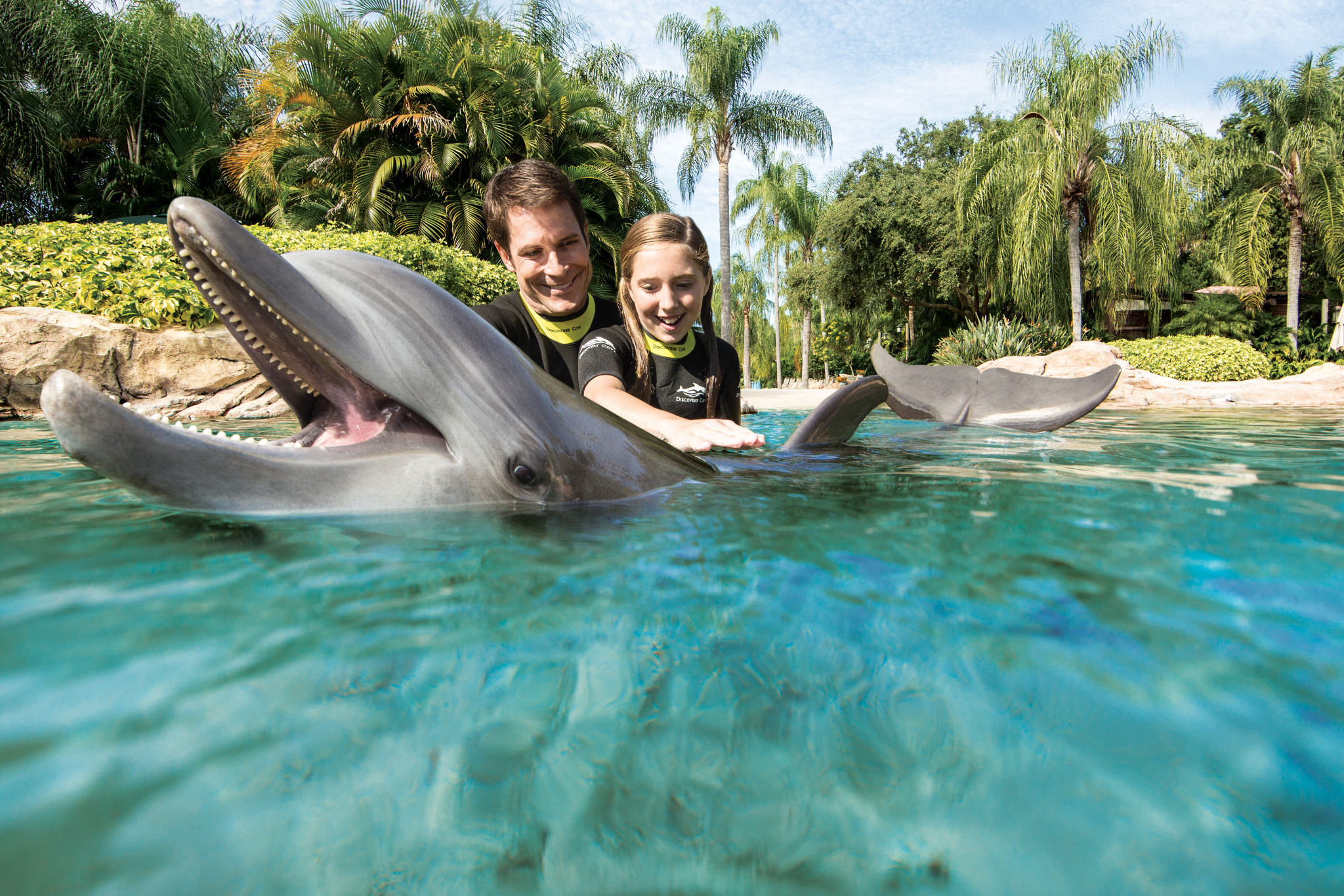 Discovery Cove Offering Florida Resident Discount With