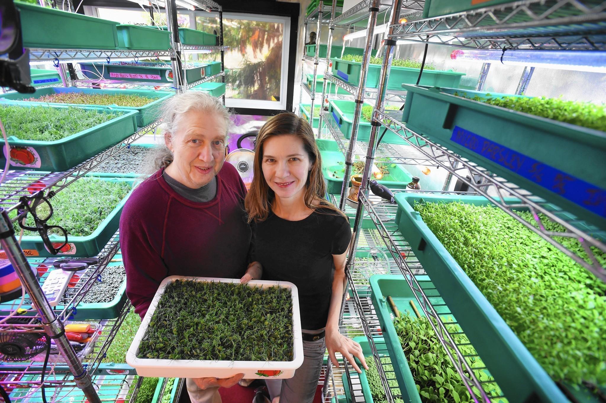 Baltimore Vertical Farmers Teach Restaurants To Grow Microgreens Sun