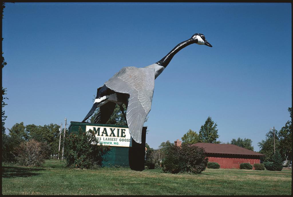 Maxie, World's Largest Goose, Sumner, Missouri, 1988.