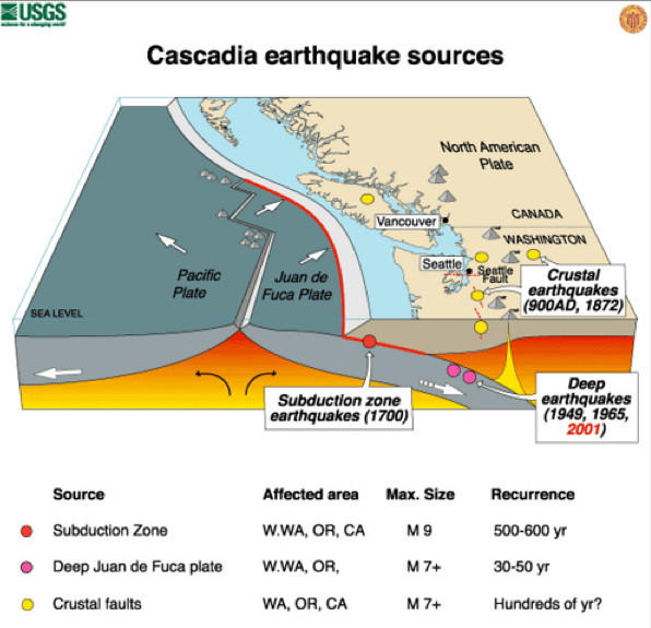The dynamics of an earthquake in the Cascadia Subduction Zone