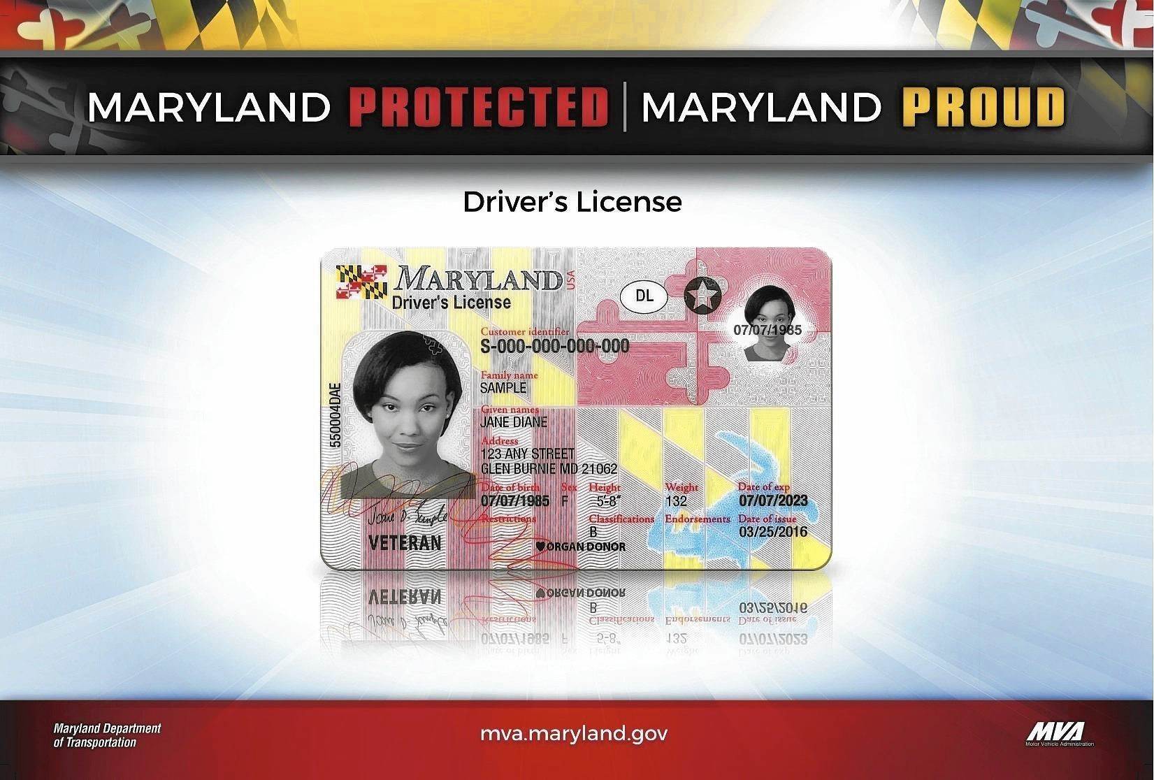 Sun New Driver's Flag-themed Baltimore Maryland - Monday Licenses Available