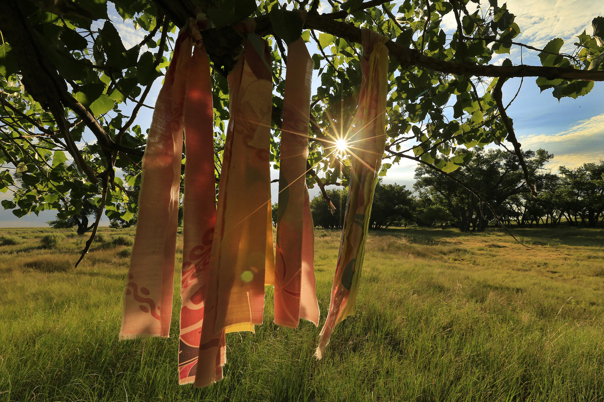 Native American prayer flags hang from a tree in the area where the massacre was perpetrated.