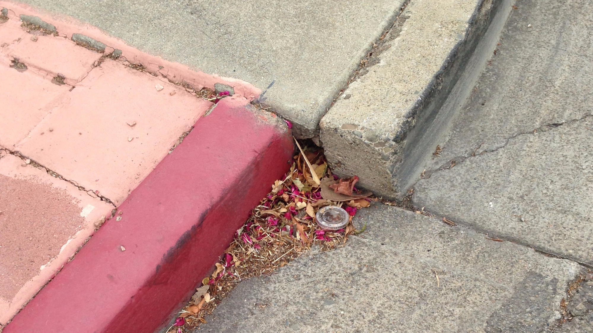 This curb was once flush but became offset because the Hayward fault is pulling the curb apart.