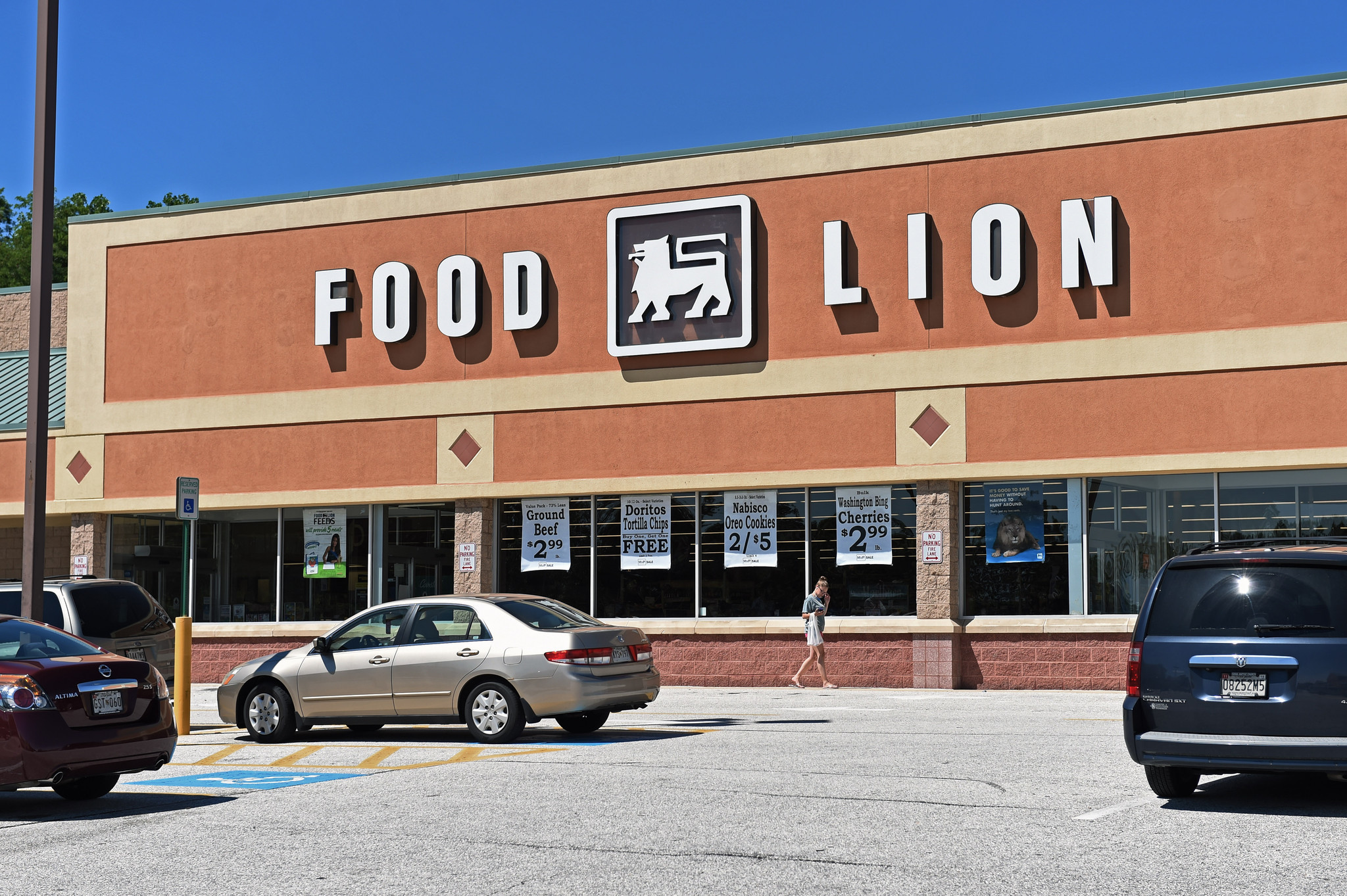 Food Lion Stores In Florida