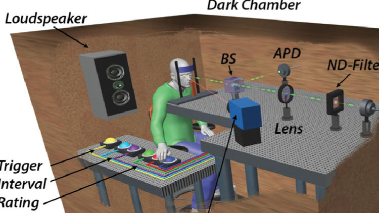 This schematic shows how the experiment was set up.