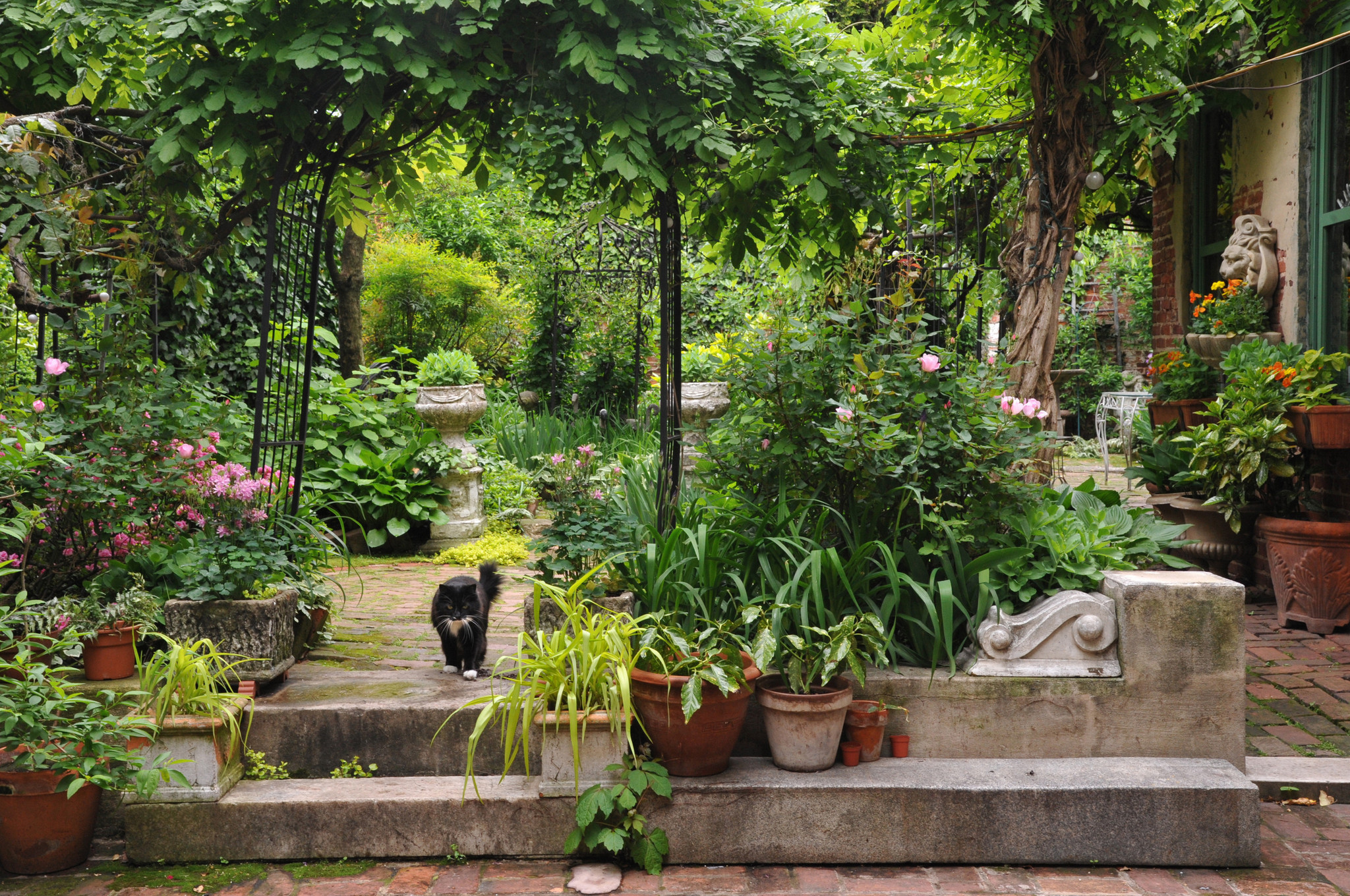 An Italian Garden Oasis In Fells Point Baltimore Sun