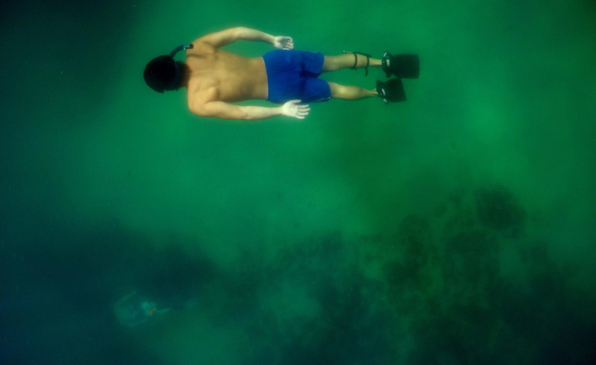 A snorkeler looks for fish at Crescent Bay in Laguna Beach (Allen J. Schaben / Los Angeles Times)
