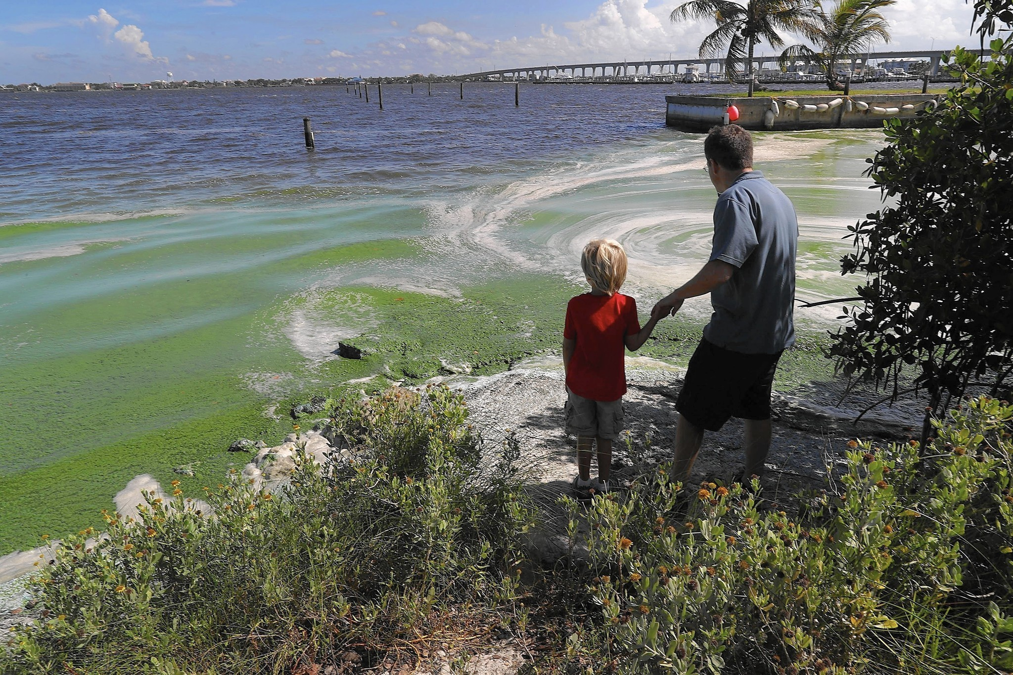 Lake Okeechobee A Time Warp For Polluted Water Orlando